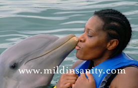 Teli kissing a Dolphin